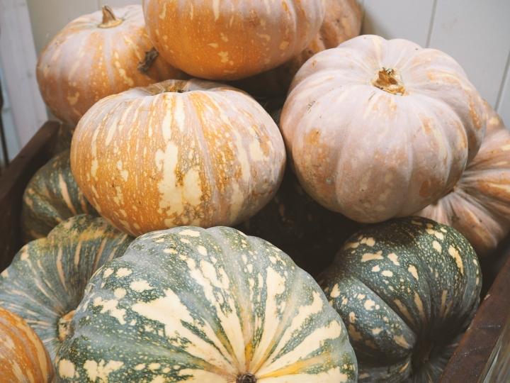 pumpkin santos byron bay vegan